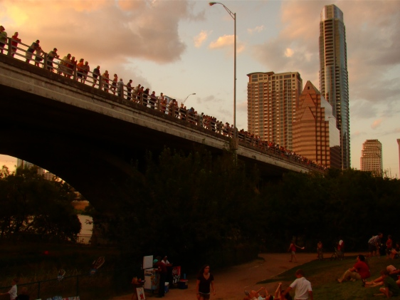 Austin Texas bat bridge