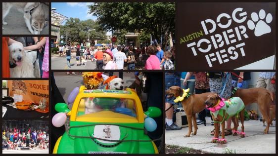 Dogtober Fest Austin 2012