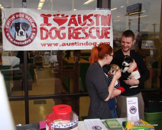 Austin Dog Rescue event